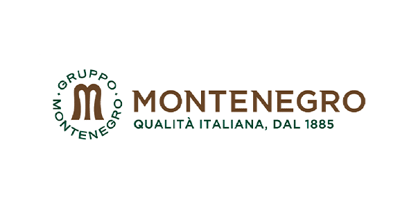 Monetnegro Group Logo